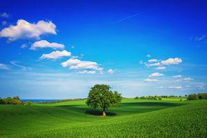 Заставки поле,холмы,поля,деревья,пейзаж
