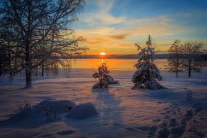 Заставки Арвика,Швеции,зима,закат,поле,деревья,снег
