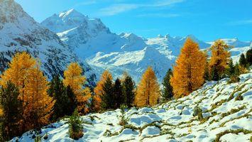 Заставки Швейцария, осень, деревья
