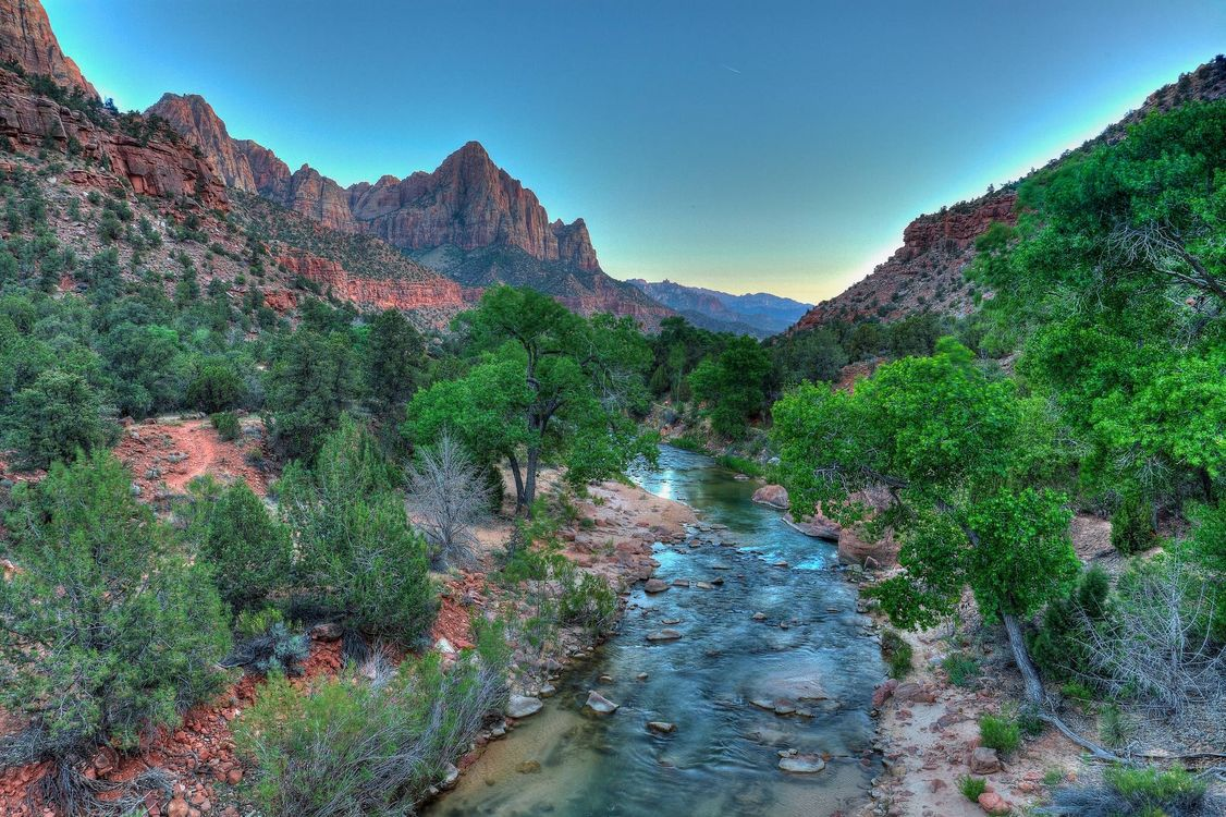 Обои Virgin River, Watchman, Zion National Park картинки на телефон