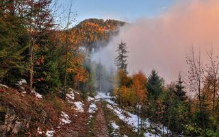 Бесплатные фото осень,горы,деревья,трава,дорога,снег,облака