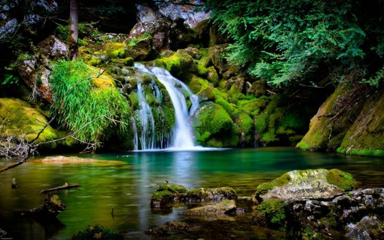 Photo free waterfall, stream, jungle