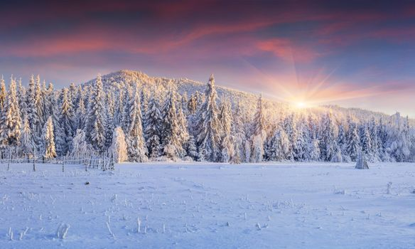 Pictures on screensaver snow, sunset free