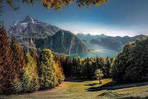 Бесплатные фото горы, деревья, елки, лес, река, лето