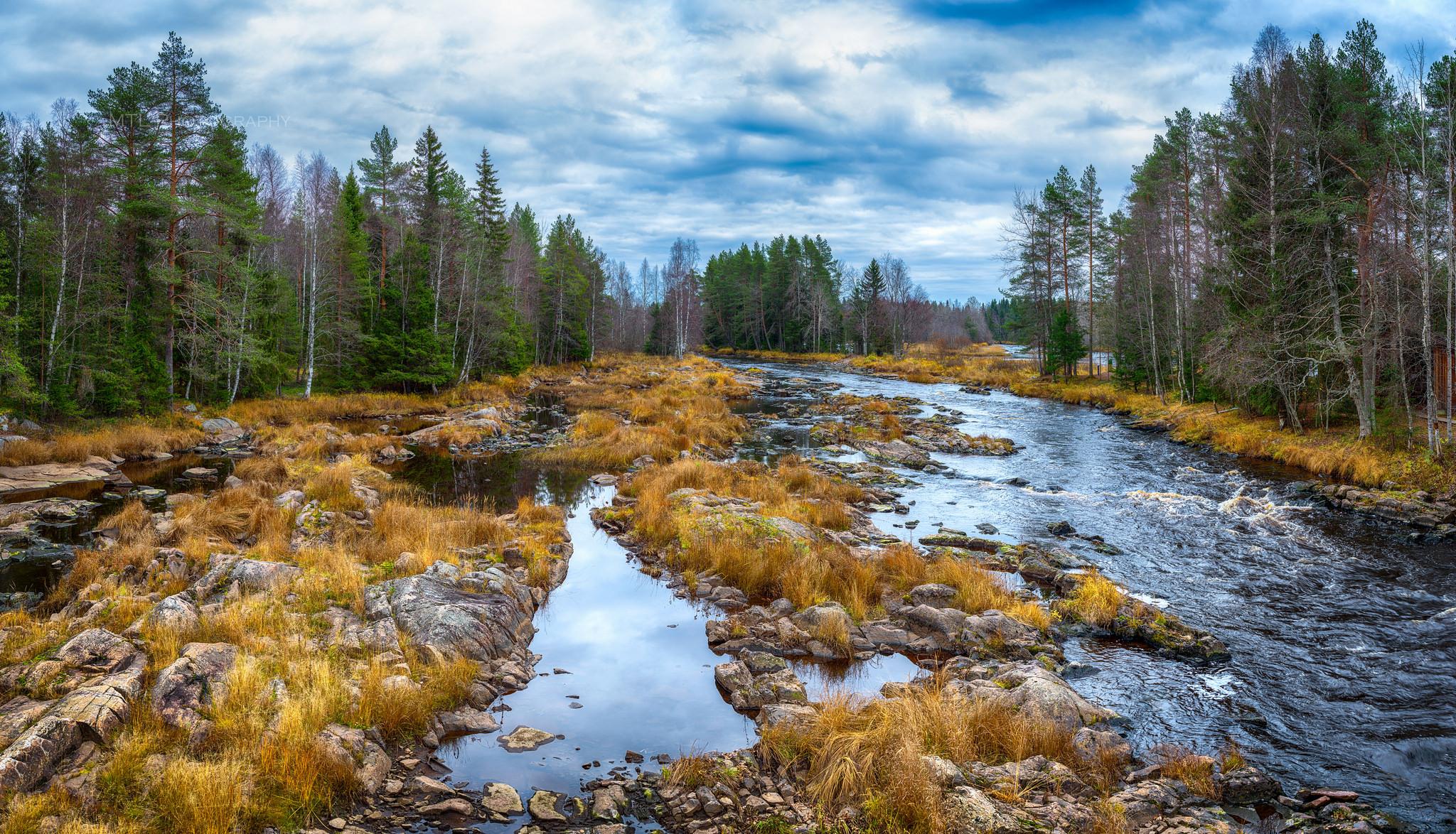 обои Kiiminkijoki Riverг, река Кииминкийоке, деревья, Finland картинки фото