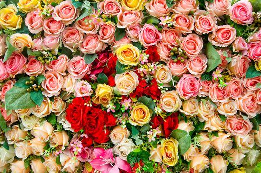 Заставки розы, цветы, цветочный фон