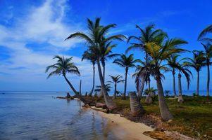 Заставки море, пляж, панама