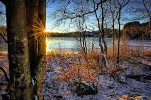 Бесплатные фото зима,утро,Норвегия,река,деревья,пейзаж