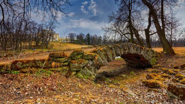Фото бесплатно Санкт-Петербург, Павловский парк, Россия