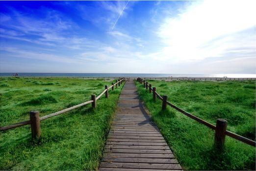 Фото бесплатно море, пляж, поле