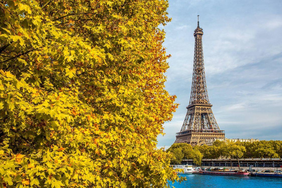 Фото бесплатно Eiffel Tower, Paris, France - на рабочий стол
