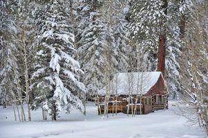Бесплатные фото лес,зима,деревья,сугробы,домик,пейзаж