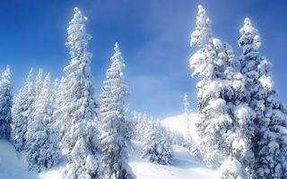 Бесплатные фото зима,снег,сугробы,деревья,горы,природа