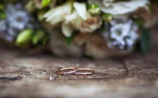 Фото бесплатно кольца, обручальные, ювелирные изделия