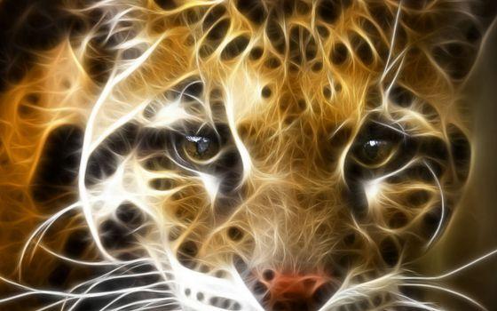 Заставки кошка, леопард, морда