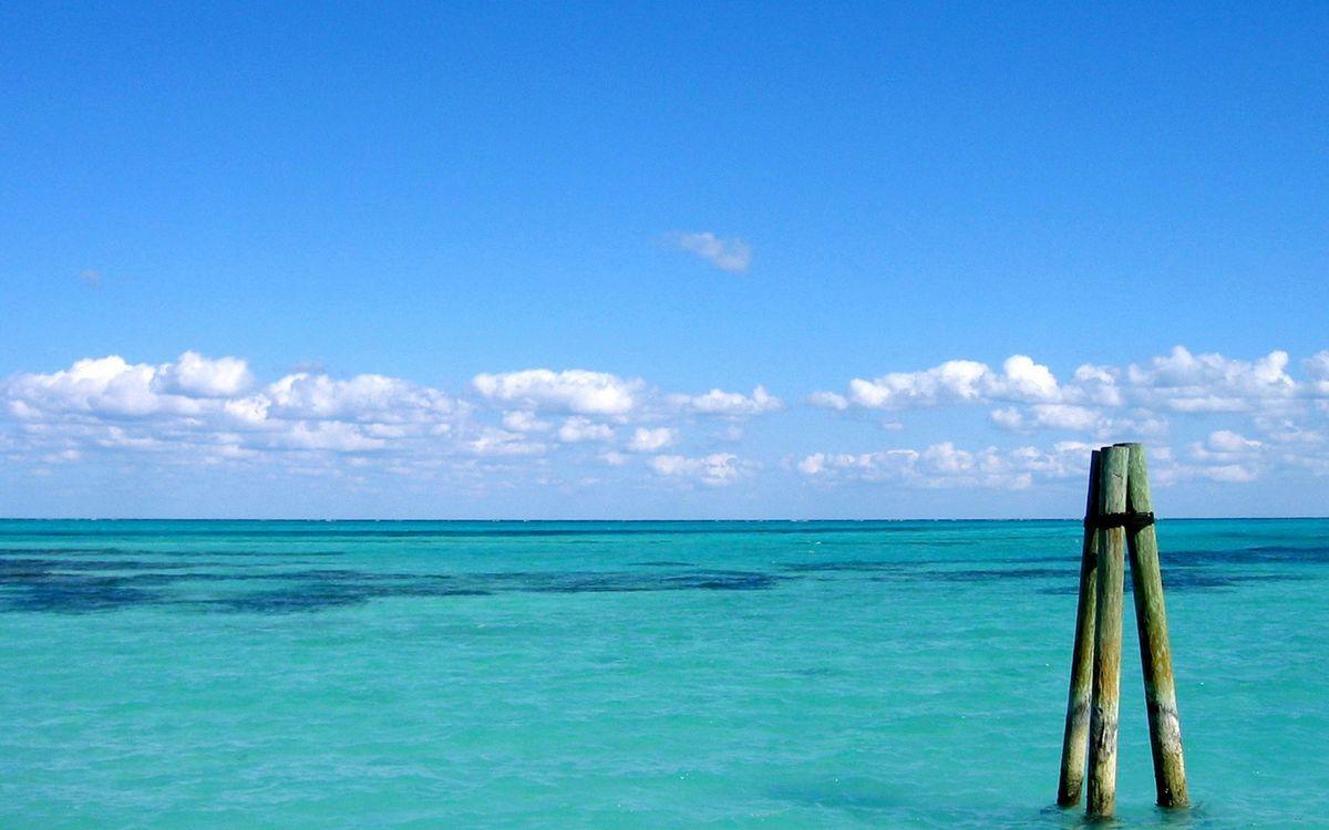 Free photo sea, piles, logs, horizon, sky, clouds - to desktop
