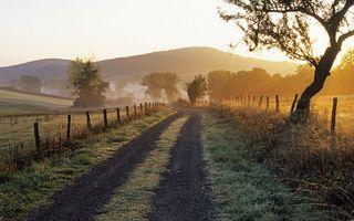 Бесплатные фото дорога,полевая,ограда,столбы,проволока,деревья,трава