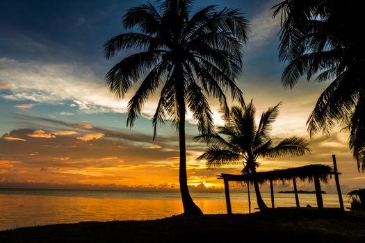Фото бесплатно вечерний пляж, пальмы, закат