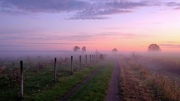 Photo free sunset, fog, road
