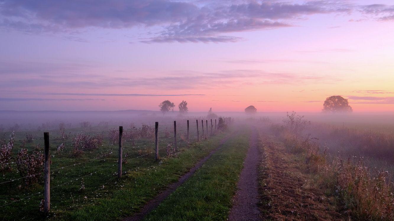 Фото бесплатно закат, туман, дорога - на рабочий стол