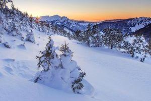 Бесплатные фото закат, зима, горы, деревья, Швейцария, пейзаж
