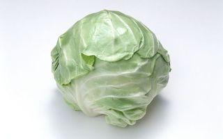 Бесплатные фото овощ,вилок,кочан,капуста,листья,фон белый