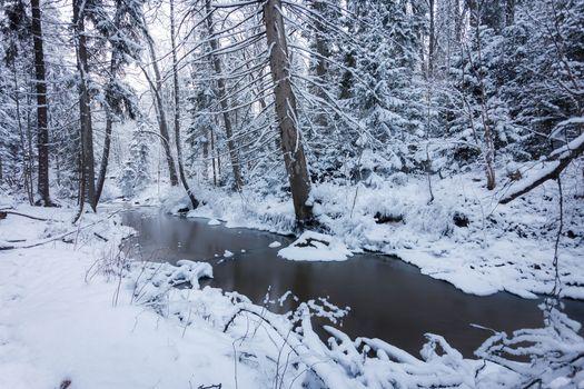 Фото бесплатно Espoo, Finland, лес, река, деревья, зима, природа