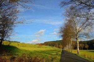 Бесплатно пейзаж, поле - фото красивые