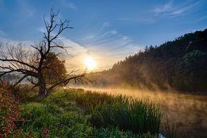 Бесплатные фото закат,водоём,река,деревья,пейзаж