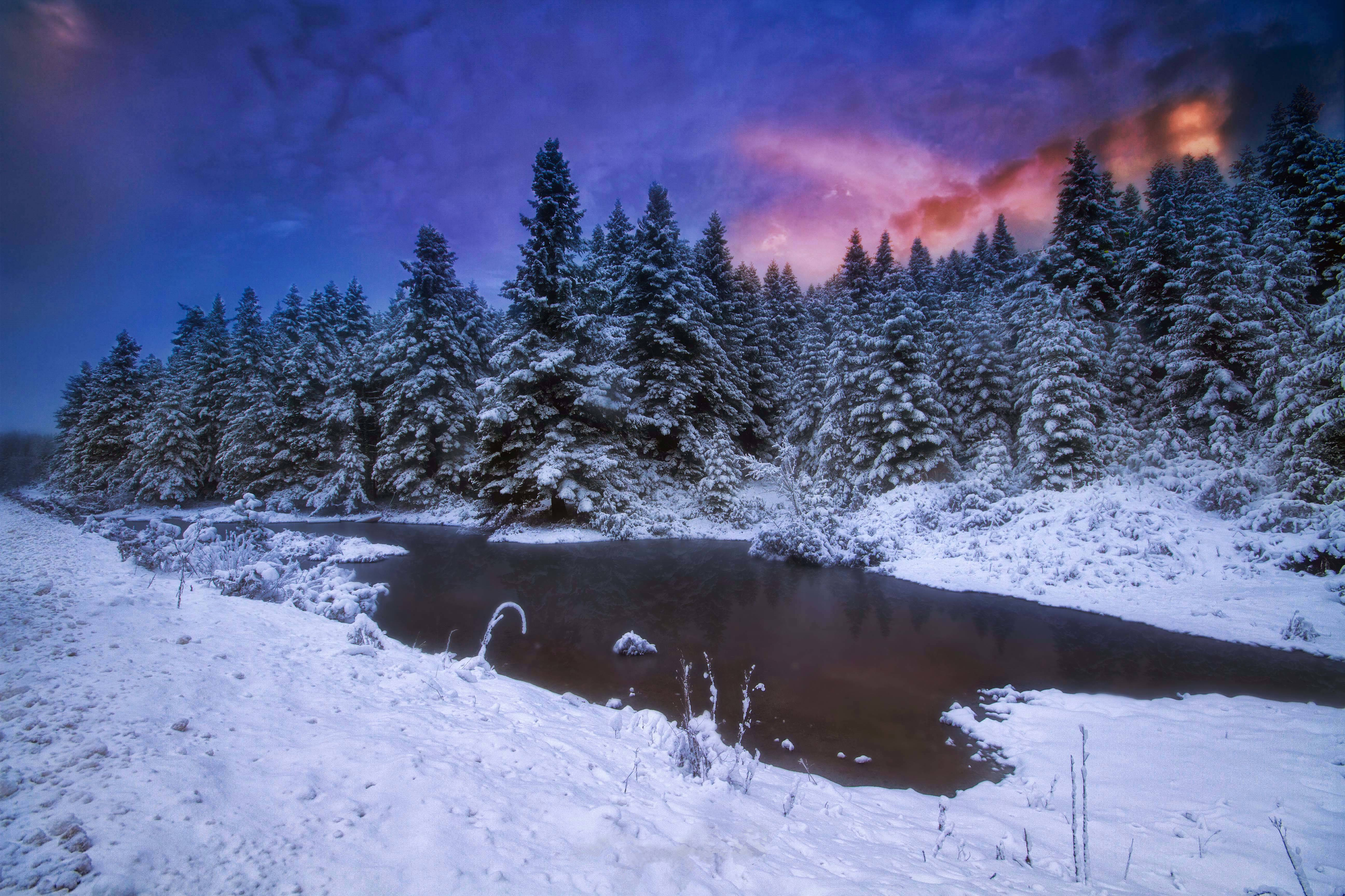 закат, зима, деревья