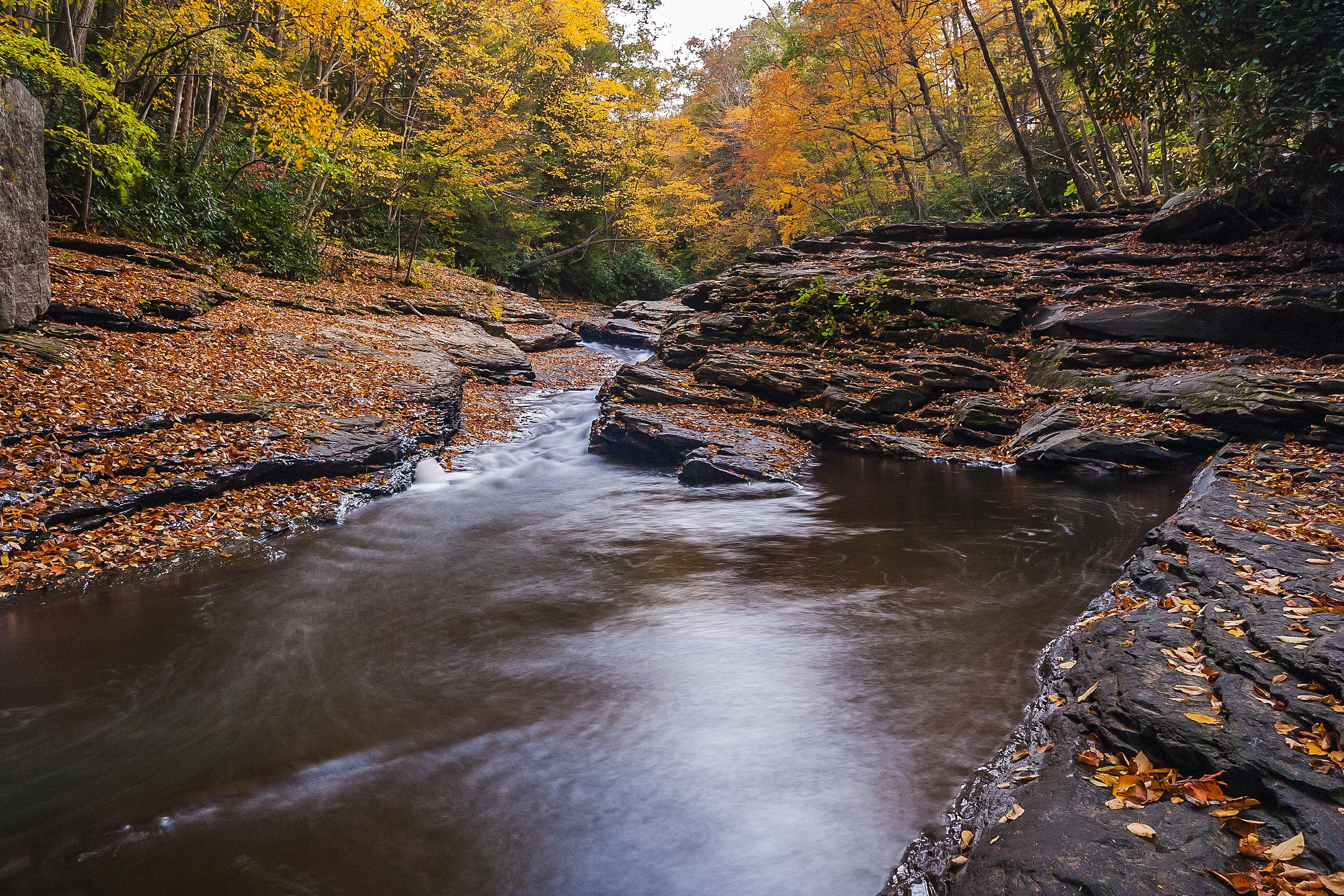 обои осень, река, скалы, лес картинки фото