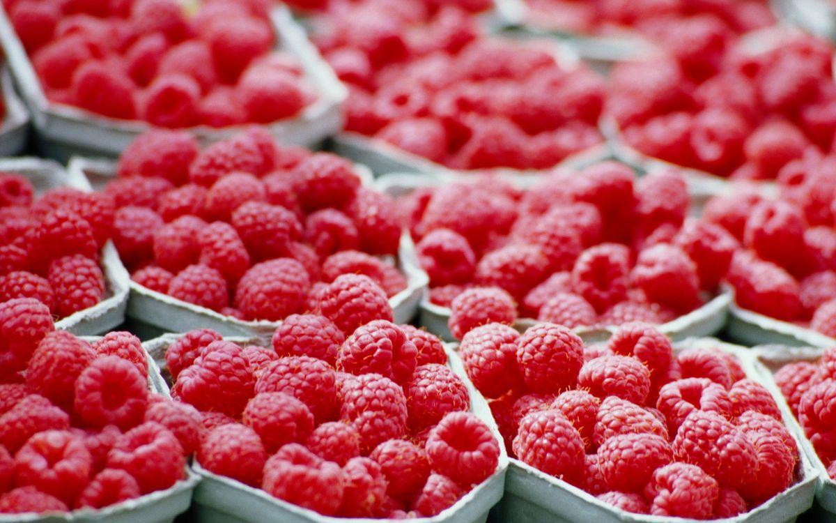 Фото бесплатно ячейки, ягода, малина, красная, порции, витамины, еда
