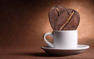 Фото бесплатно чашка, кофейные зерна, кофе, стол