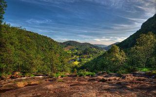 Фото бесплатно горы, земля, кустарник
