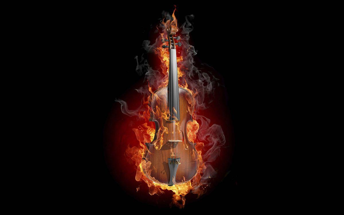 Фото бесплатно скрипка, гриф, струны - на рабочий стол