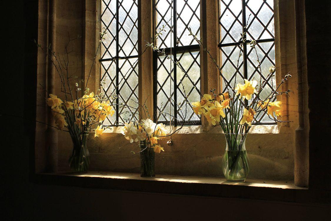 Фото бесплатно окно, вазы, ваза, цветы, букет, нарциссы, натюрморт, цветы