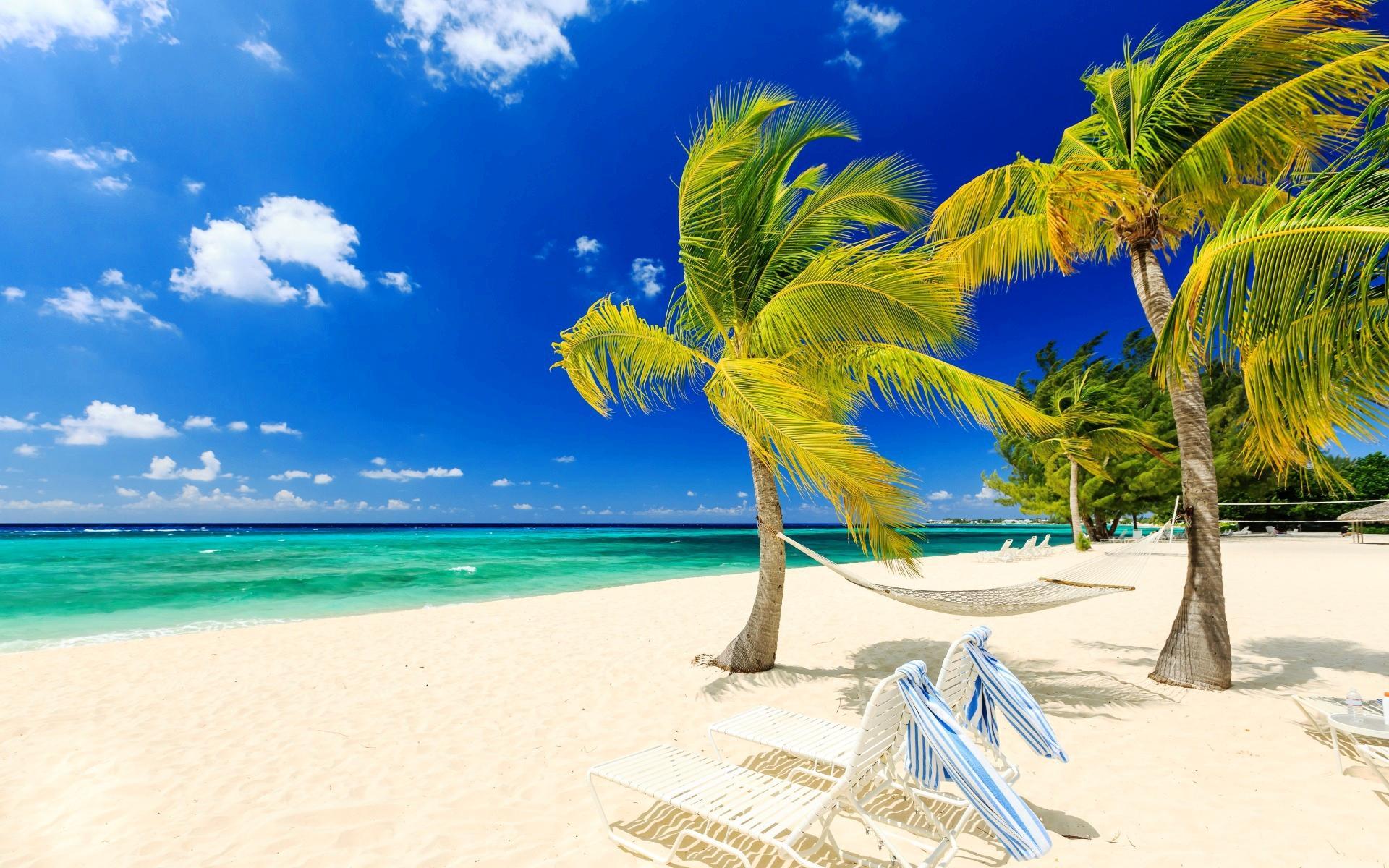 обои море, пальмы, пляж, пейзаж картинки фото