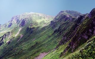 Бесплатные фото горы,вершины,трава,цветы,небо