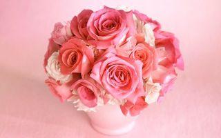 Photo free pink background, vase, bouquet
