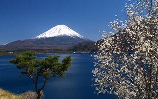 Фото бесплатно озеро, деревья, горы
