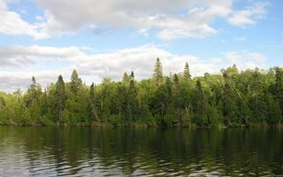 Фото бесплатно берег, облака, лес