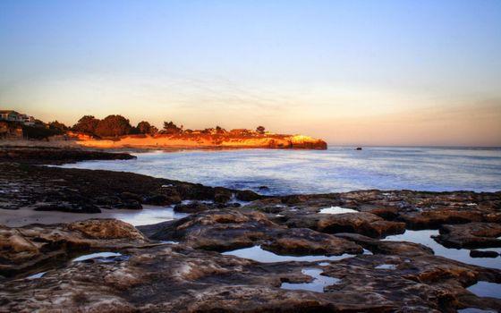 Фото бесплатно побережье, рифы, деревья