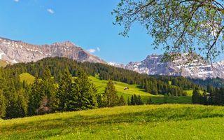 Бесплатные фото трава,деревья,строение,горы,скалы,вершины,снег