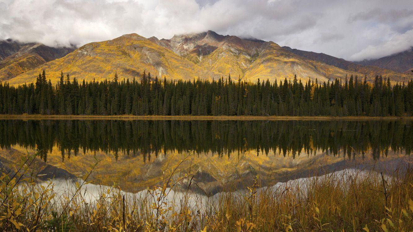 Фото бесплатно берег, трава, река, гладь, отражение, лес, деревья, горы, облака, природа