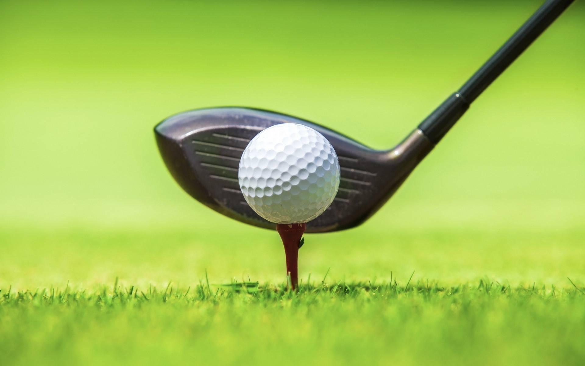 Обои гольф, клюшка, мяч, подставка