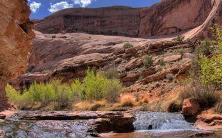Бесплатные фото ручей,пороги,камни,растительность,каньон,горы песчаники
