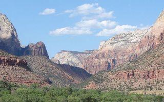 Фото бесплатно каньон, деревья, растительность