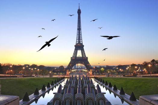 Photo free Eiffel Tower, Paris, France