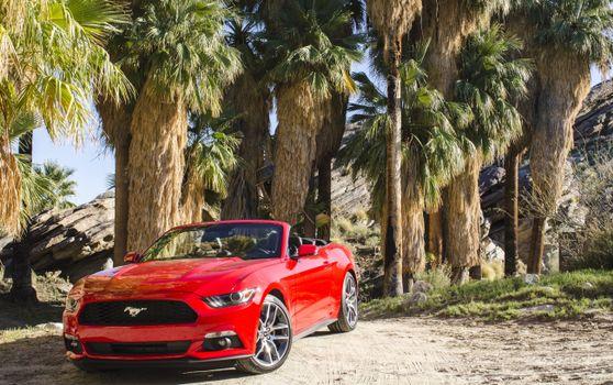 Фото бесплатно Ford Mustang Convertible, красный
