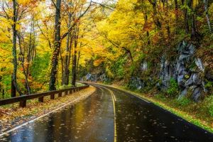 Photo free Great Smoky National Park, Tennessee, Autumn